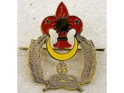 BSM BOY SCOUT METAL CAP PATCH