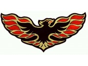 GIANT FIREBIRD MOTOR RACING PATCH (P1)