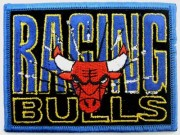 NBA Chicago Bulls Basketball Embroidered Patch #08