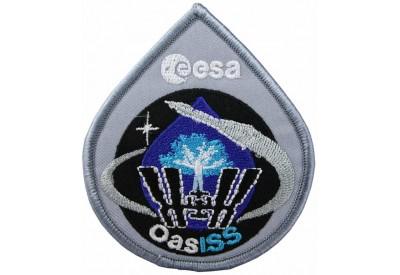 2009 RUSSIA SPACE FLIGHT SOYUZ TMA-15 PATCH